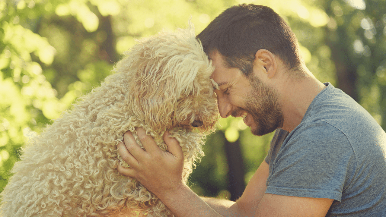 The influence of humanisation is currently at its peak, as pet owners urge the pet food industry to create products that follow human food trends